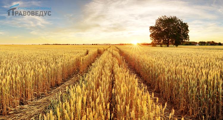 Право общей собственности на землю